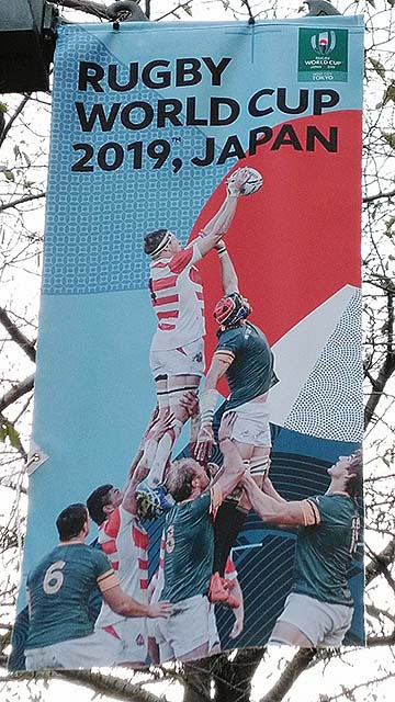 ラグビーワールドカップ2019の街中のフラッグ