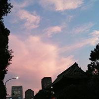 8月の東京の空は…
